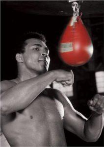 出拳速度训练和练习